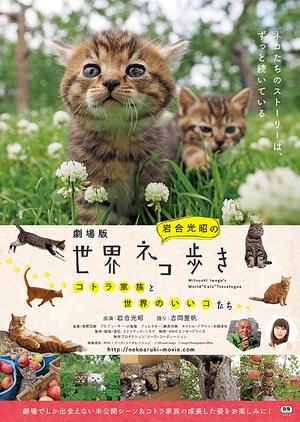 "Mitsuaki Iwago's World ""Cats"" Travelogue 2017 (Japan)"