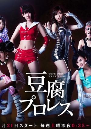 Tofu Pro Wrestling (Japan) 2017