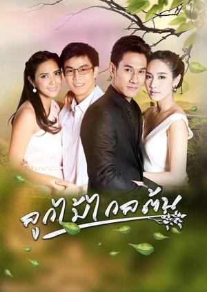 Look Mai Klai Ton (Thailand) 2016