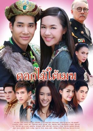 Dok Mai Tai Mek (Thailand) 2015