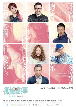 Mr. Right Wanted (Taiwan) 2014