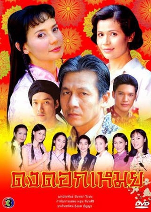 Dong Dok Moey 2003 (Thailand)