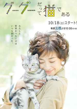 Gou Gou, the Cat (Japan) 2014