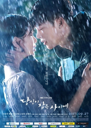 While You Were Sleeping (South Korea) 2017