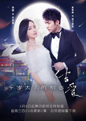 The Love Knot: His Excellency's First Love (China) 2018