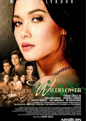 Wildflower (Philippines) 2017