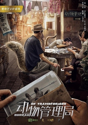 Bureau of Transformer 2019 (China)