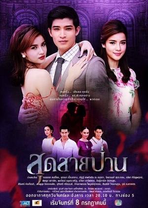 Sud Sai Pan (Thailand) 2013