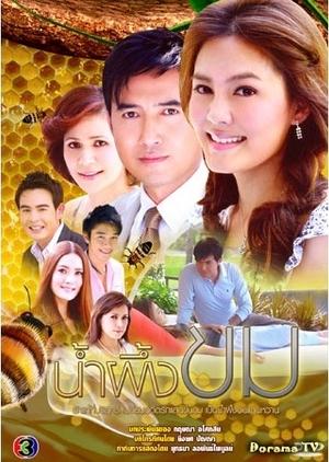 Nam Pueng Kom 2009 (Thailand)