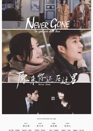 Never Gone (China) 2018