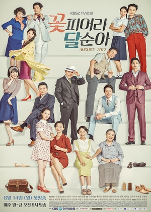 TV Novel: Dal Soon's Spring (South Korea) 2017