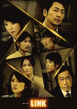 Link (Japan) 2013