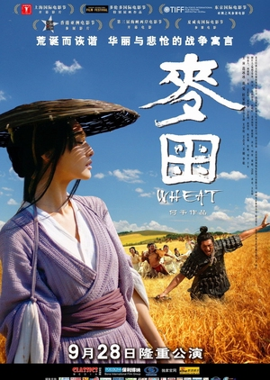 Wheat 2009 (China)