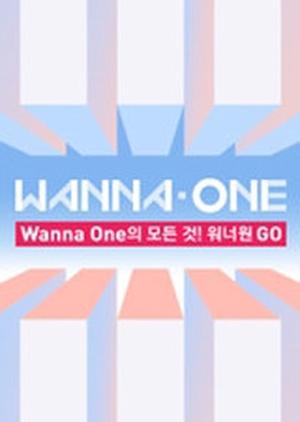 Wanna One Go 2017 (South Korea)