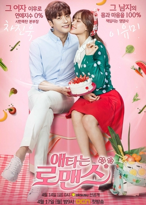My Secret Romance (South Korea) 2017