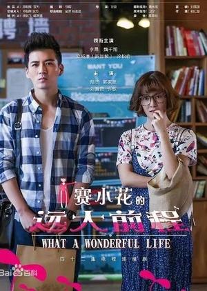 What a Wonderful Life (China) 2017