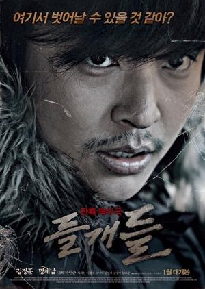 Wild Dogs 2014 (South Korea)