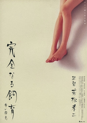 Perfect Education 6 2004 (Japan)
