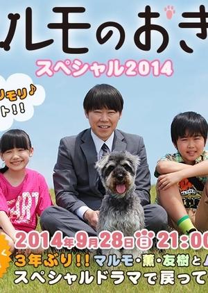 Marumo no Okite Special 2014 (Japan) 2014