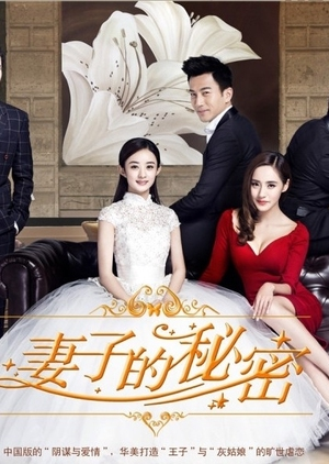 The Wife's Secret (China) 2014