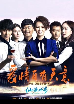 Love Destiny 2013 (China)