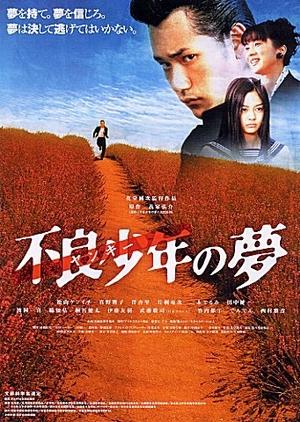 Yankee Bokou ni Kaeru 2003 (Japan)