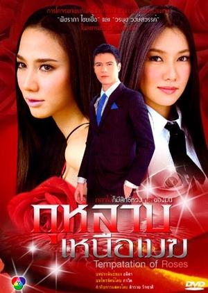 Kularb Neua Mek 2009 (Thailand)