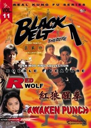 The Awaken Punch 1973 (Hong Kong)