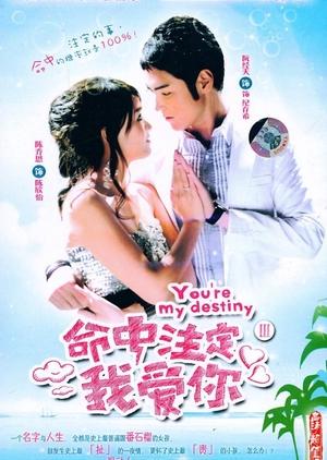 You're My Destiny 2008 (Taiwan)