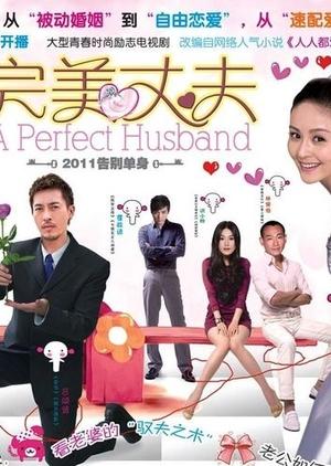 A Perfect Husband 2011 (China)