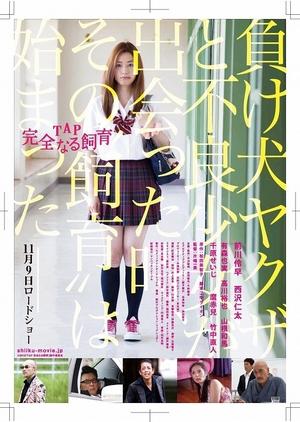 TAP Perfect Education 2013 (Japan)