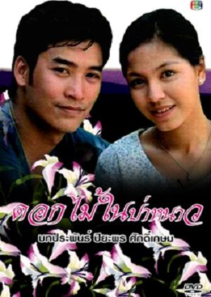 Dok Mai Nai Pah Nao 1996 (Thailand)