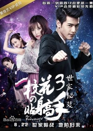 Mr. Bodyguard 3 (China) 2016