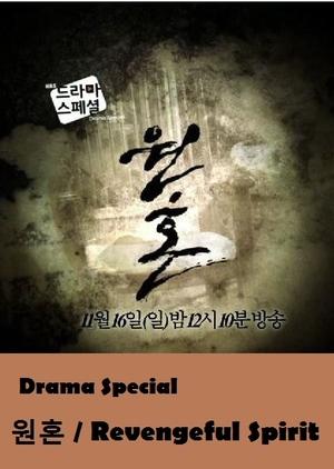 Drama Special Season 5: Vengeful Spirit (South Korea) 2014
