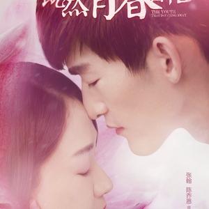 Youth Never Returns 2015 (China)