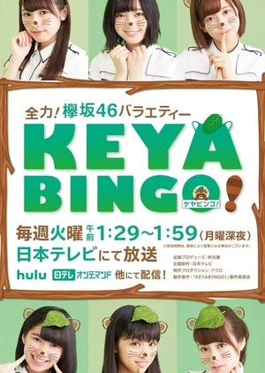 KeyaBingo!: Season 1 2016 (Japan)
