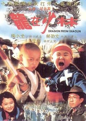 Dragon From Shaolin 1996 (Taiwan)