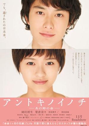 Life Back Then 2011 (Japan)