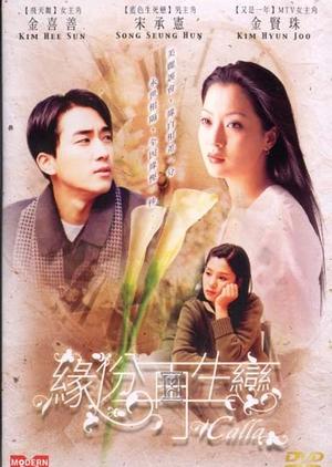 Calla 1999 (South Korea)