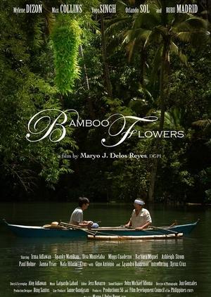 Bamboo Flowers 2013 (Philippines)