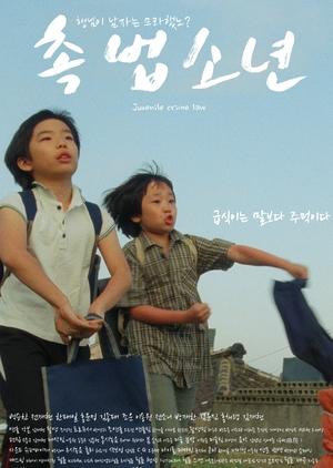 Juvenile Crime Law 2016 (South Korea)