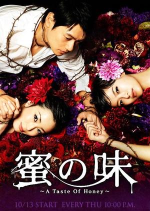 Mitsu no Aji 2011 (Japan)
