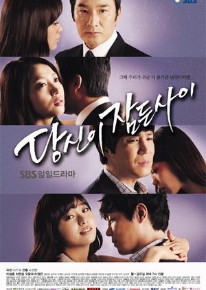 While You Were Sleeping 2011 (South Korea)