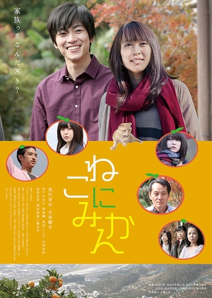 Tangerines on Cat 2014 (Japan)