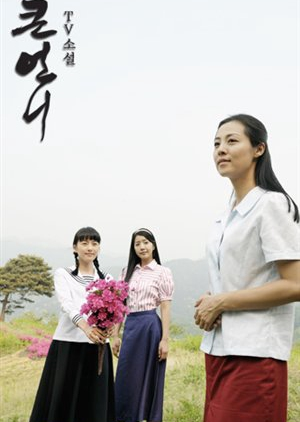 TV Novel: Big Sister 2008 (South Korea)