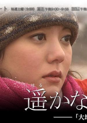 Distant Bonding 2009 (Japan)