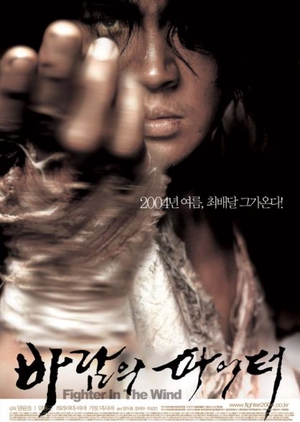Fighter in the Wind 2004 (South Korea)
