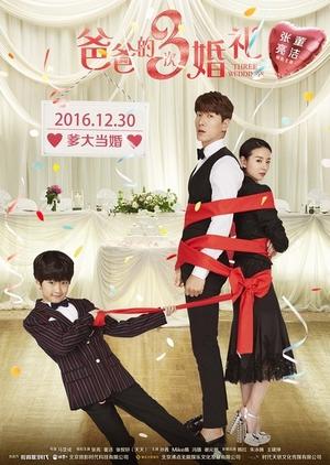 Three Weddings 2016 (China)