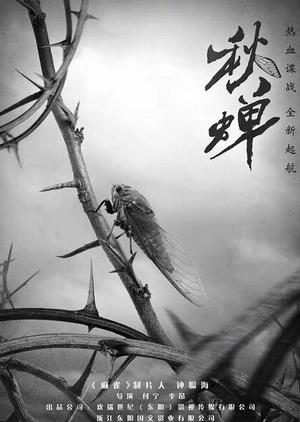 Autumn Cicada 2019 (China)