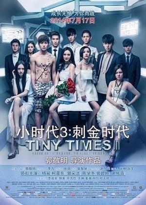 Tiny Times 3 2014 (China)